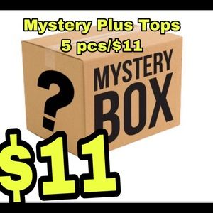 Tops - Reseller mystery boxes wholesale PLUS tops women's